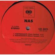 """Nas - Nastradamus, 12"""", Promo"""