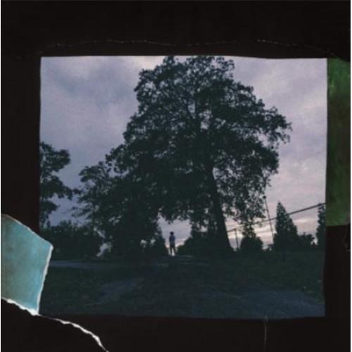 J. Cole - 4 Your Eyez Only, LP