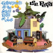 Mad Professor & Lee Perry - Experryments At The Grass Roots Of Dub, LP