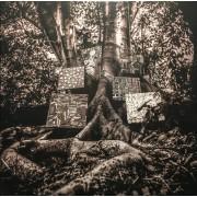 "Kamasi Washington - Harmony Of Difference, 12"", EP"