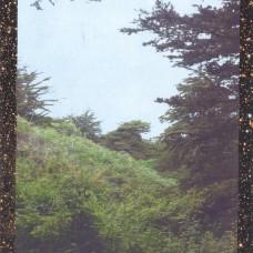 Jinsang - Life., LP