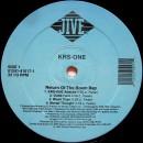 KRS-ONE - Return Of The Boom Bap, 2xLP