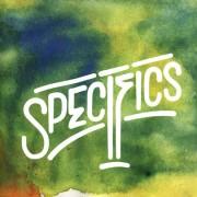 Specifics - II, 2xLP, Reissue