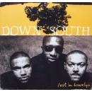 Down South - Lost In Brooklyn, 2xLP