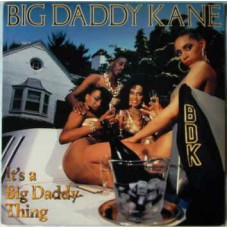 Big Daddy Kane - It's A Big Daddy Thing, LP
