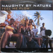Naughty By Nature - Feel Me Flow / Hang Out And Hustle, 12""