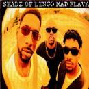 "Shadz Of Lingo - Mad Flavaz, 12"""