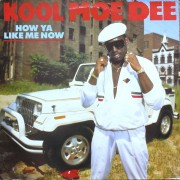 Kool Moe Dee - How Ya Like Me Now, LP