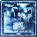 Naughty By Nature - Poverty's Paradise, LP