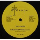 Too Fresh - Groove Busted, 12""