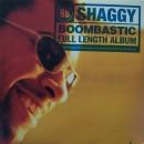 Shaggy - Boombastic, LP