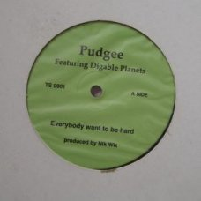 """Pudgee - Everybody Want To Be Hard / Inner City Blues, 12"""""""