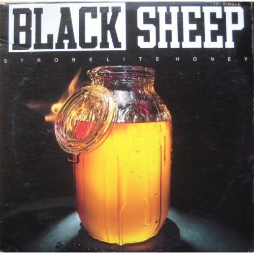 Black Sheep - Strobelite Honey, 12""