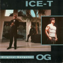 Ice-T - O.G. Original Gangster, LP