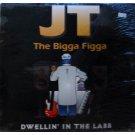 """JT The Bigga Figga - Dwellin' In The Labb, 12"""""""