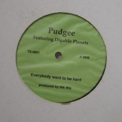 Pudgee - Everybody Want To Be Hard / Inner City Blues, 12""