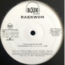 "Raekwon - Glaciers Of Ice, 12"", Promo"