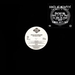 Souls Of Mischief - No Man's Land, LP, Promo
