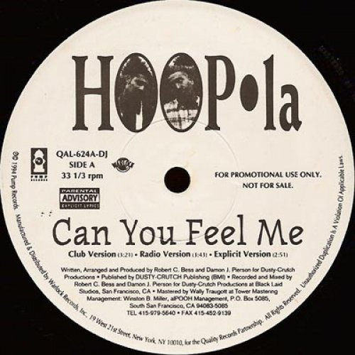 "Hoop-la - Can You Feel Me / Brotha's Goin' Crazy, 12"", Promo"