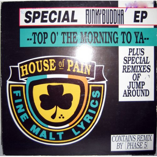 """House Of Pain - Top O' The Morning To Ya, 12"""""""