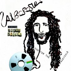 Alborosie Meets The Roots Radics - Dub For The Radicals, LP