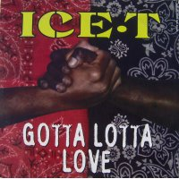 """Ice-T - Gotta Lotta Love, 12"""""""