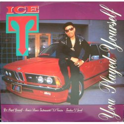 """Ice-T - You Played Yourself, 12"""""""