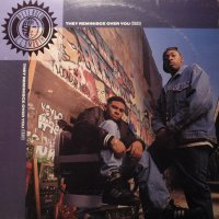 """Pete Rock & C.L. Smooth - They Reminisce Over You (T.R.O.Y.), 12"""""""