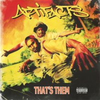 Artifacts - That's Them (20th Anniversary Edition), 2xLP, Reissue