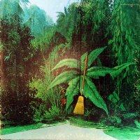 Gabor Szabo - Magical Connection, LP