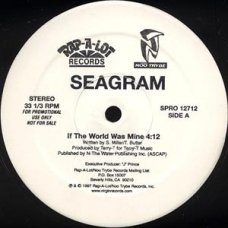 "Seagram - If The World Was Mine, 12"", Promo"