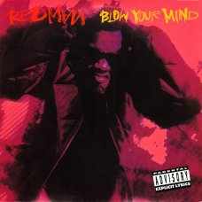 "Redman - Blow Your Mind, 12"""
