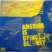 Various - America Is Dying Slowly, 2xLP