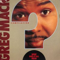 Various - Greg Mack Compilation - What Does It All Mean?, LP