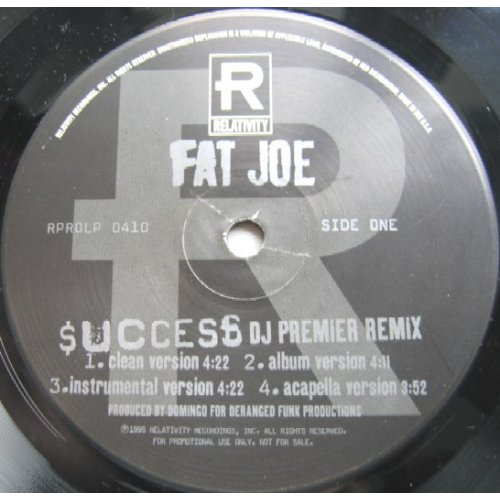 "Fat Joe - Success (DJ Premier Remix) / Dedication, 12"", Promo"