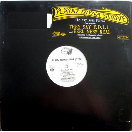"""Playaz Tryna Strive - They Say Y.D.L.L. / Feel Ness Real, 12"""", Promo"""