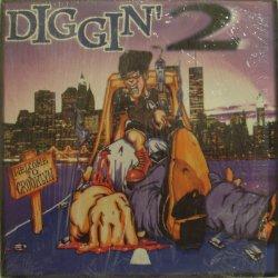 Various - Diggin' 2, LP