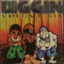 Various - Diggin Volume Six, LP