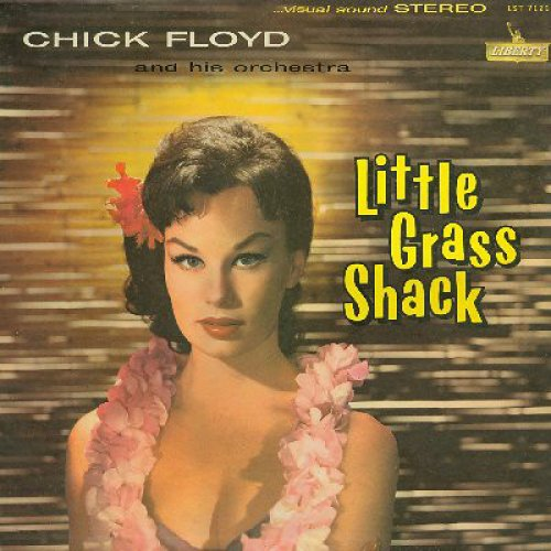 Chick Floyd And His Orchestra - Little Grass Shack, LP