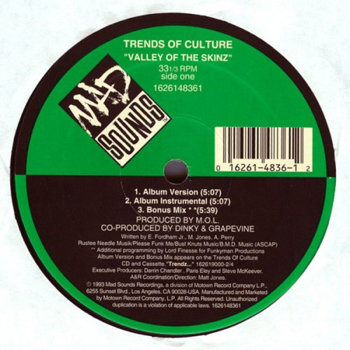Trends Of Culture - Valley Of The Skinz, 12""