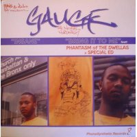 Gauge - Insane / Bring It To Me, 12""