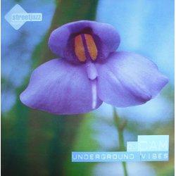 DJ Cam - Underground Vibes, LP