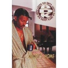 Big Daddy Kane - Daddy's Home, Cassette