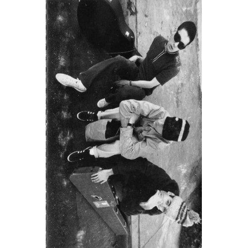 Beastie Boys - Check Your Head, Cassette