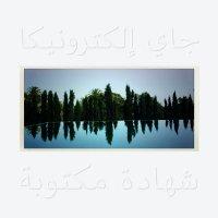 Jay Electronica - A Written Testimony, LP
