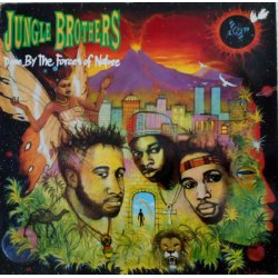 Jungle Brothers - Done By The Forces Of Nature, LP