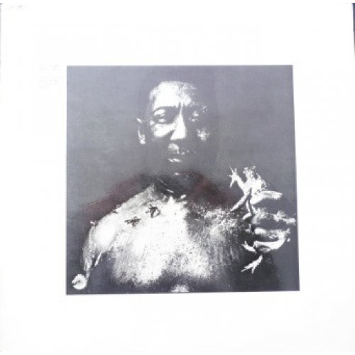 Muddy Waters - After The Rain, LP