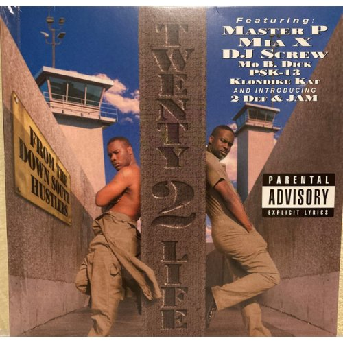 20-2-Life - Twenty-Two-Life, LP, Reissue