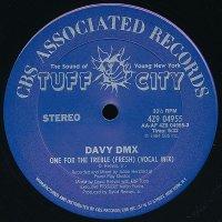 "Davy DMX - One For The Treble (Fresh), 12"""