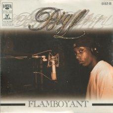 """Big L - Flamboyant, 12"""""""